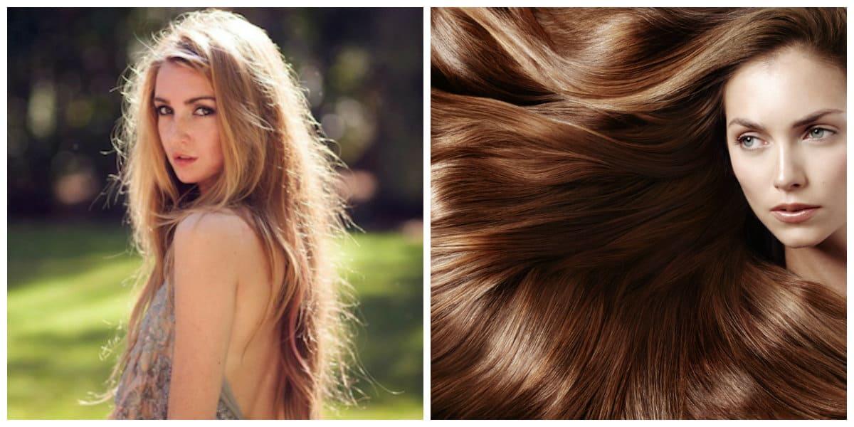Aceite de semilla de uva para el cabello- brillantes pelos de moda