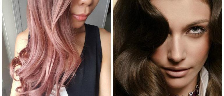 Aceite de semilla de uva para el cabello- elegancias y modernidad