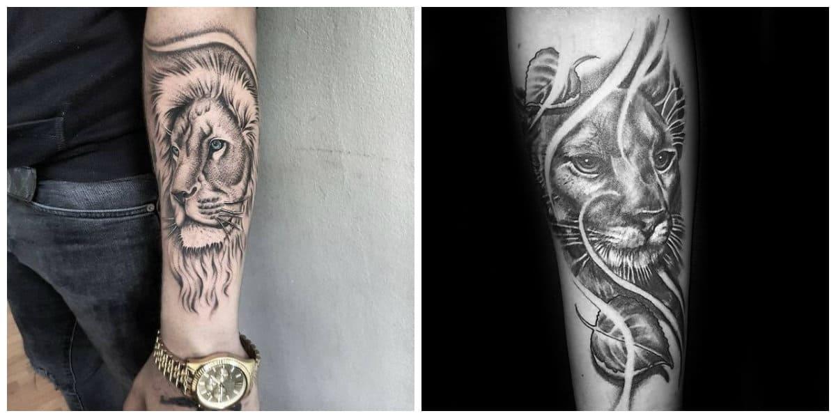 Tatuajes de leones- como simbolo de proderio y singularidad