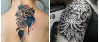 Crisantemo tatuaje- mujeres y hombres aceptan su simbolismo fuerte