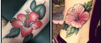 Tatuaje hibisco- imagenes e ideas de este flor en tatuajes
