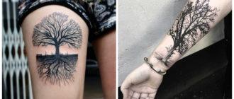 Tatuajes de arboles- uno de los mejores tendencias para hombres y mujeres