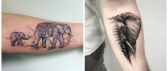 Tatuajes de elefantes- imagenes de modelos de tatuajes modenros de moda