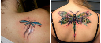 Tatuajes de libelulas- imagenes y representaciones de estos modelos de tatuajes